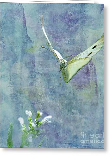 Butterfly In Flight Greeting Cards - Winging It Greeting Card by Betty LaRue