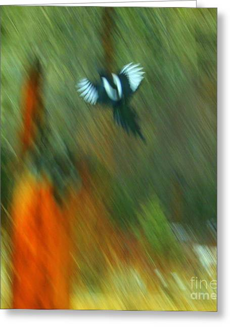 Julielueders Greeting Cards - Wings Greeting Card by Julie Lueders
