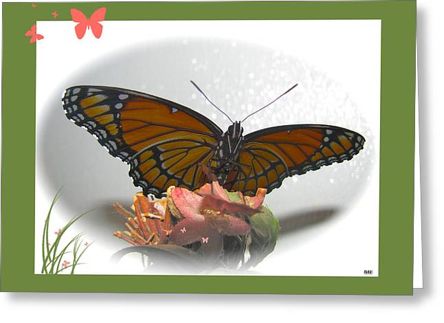 Wings Of Beauty Greeting Card by Debra     Vatalaro