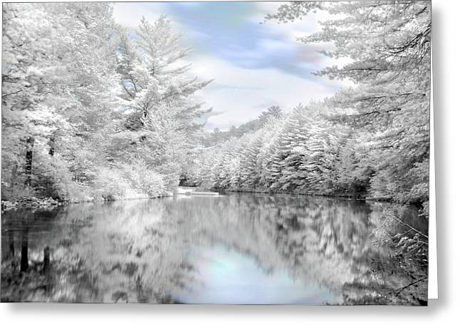 Winter at the Reservoir Greeting Card by Lori Deiter