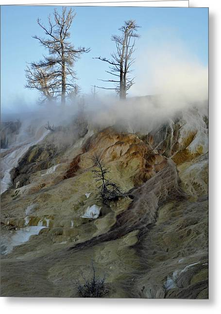 Mammoth Terrace Greeting Cards - Winter at Yellowstones Mammoth Terrace Greeting Card by Bruce Gourley