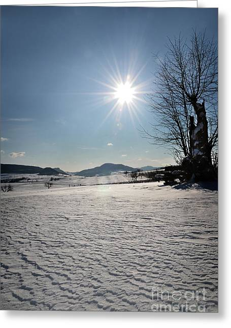Coldly Greeting Cards - Winter Beauty 3 Greeting Card by Bruno Santoro