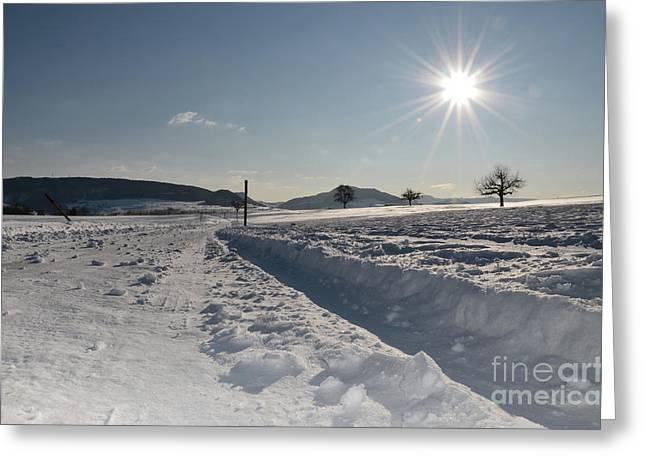 Winter Beauty Greeting Card by Bruno Santoro