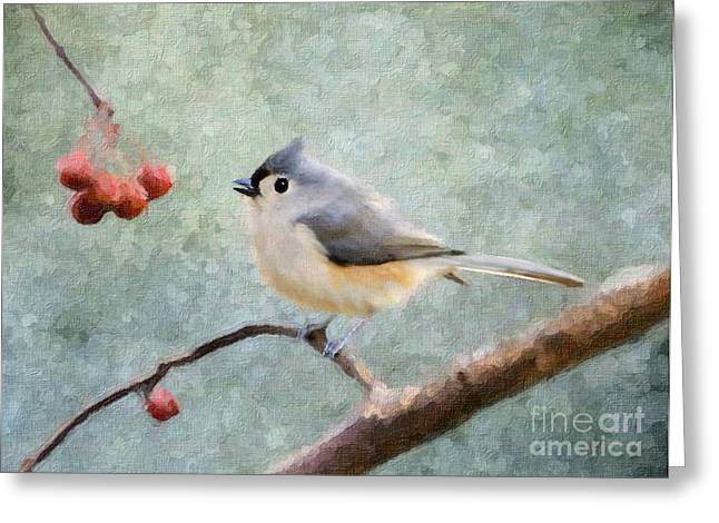 Tufted Titmouse Greeting Cards - Winter Berries Greeting Card by Betty LaRue