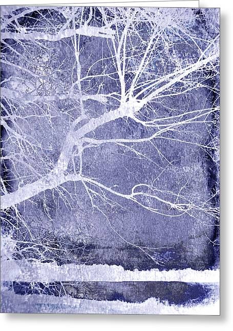 Manipulated Photography Greeting Cards - Winter Blues Greeting Card by Ann Powell