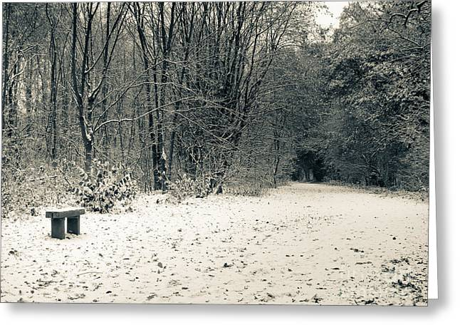 Snowy Greeting Cards - Winter Bridleway Greeting Card by Andy Smy