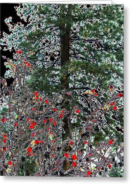 Moonlit Night Greeting Cards - Winter Color Greeting Card by Will Borden
