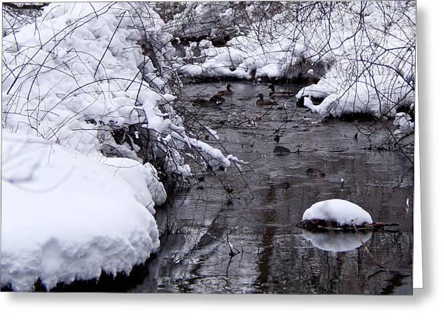 Rill Greeting Cards - Winter Convergence Greeting Card by Scott  Wyatt