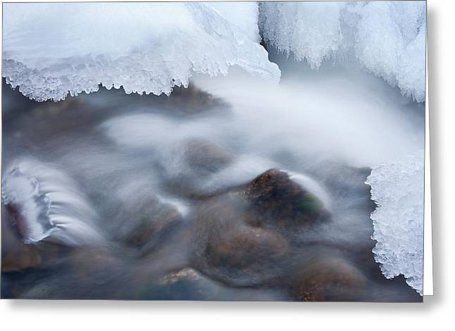 Beautiful Creek Greeting Cards - Winter Creek Framed by Ice Greeting Card by Dean Pennala