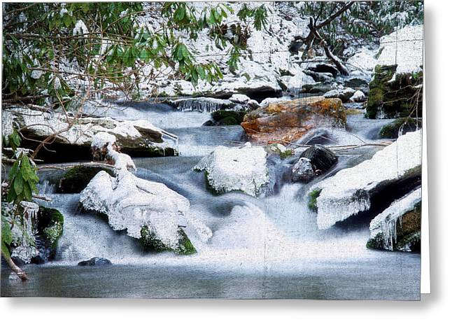 WInter Greeting Card by Darren Fisher