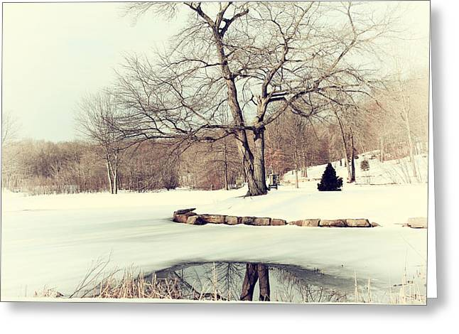 Winter Day In The Park Greeting Card by Karol Livote