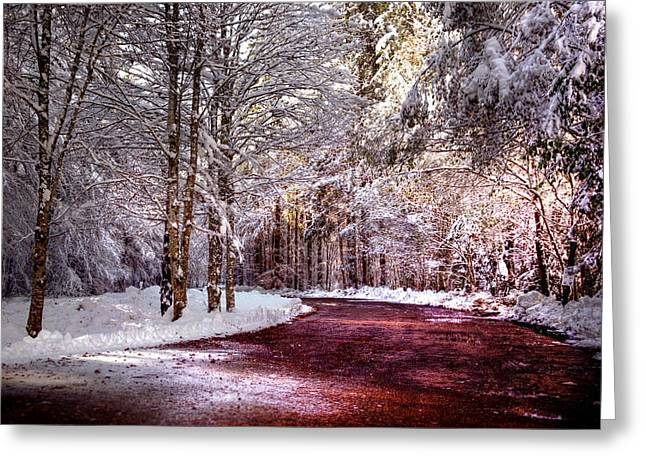 Drive Through Greeting Cards - Winter Drive Greeting Card by Anthony Citro