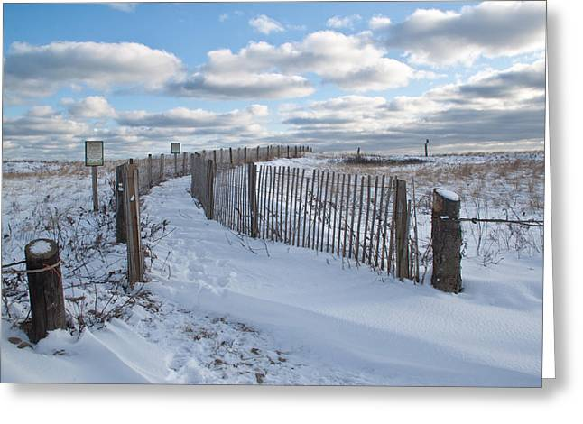 Duxbury Greeting Cards - Winter Dunes Greeting Card by Susan OBrien