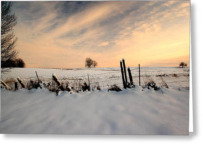 Fuad Azmat Greeting Cards - Winter Greeting Card by Fuad Azmat