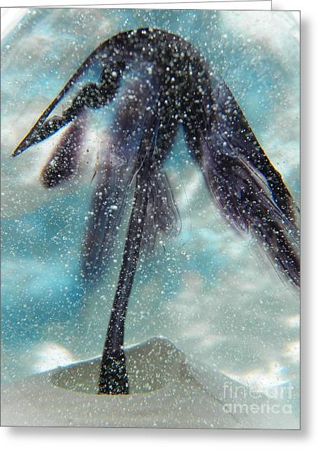 Winter Trees Glass Art Greeting Cards - Winter in Blown Glass Greeting Card by Judy Via-Wolff