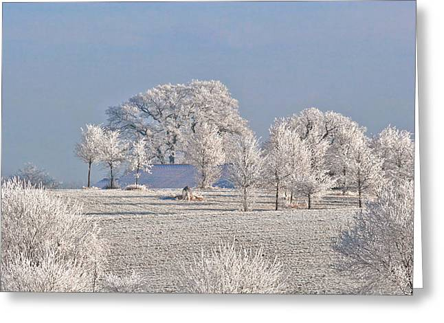 Scenic Landscape Greeting Cards - Winter in Canada Greeting Card by Christine Till