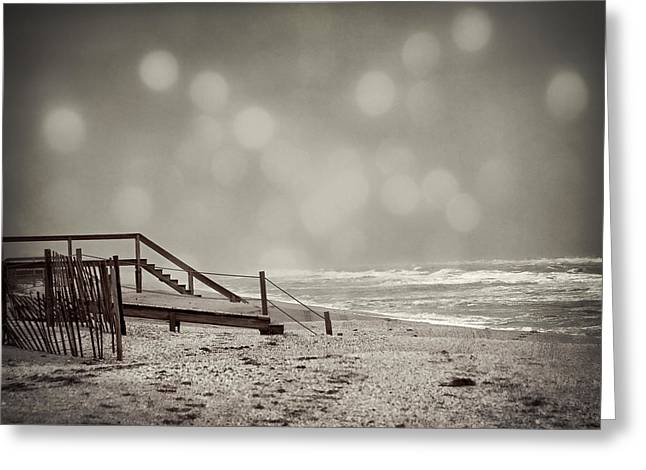 Sepia White Nature Landscapes Greeting Cards - Winter in Florida Greeting Card by Mario Celzner