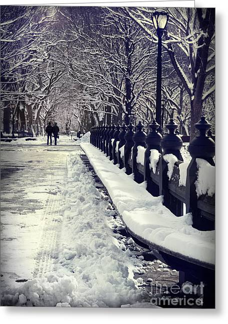 Olia Saunders Greeting Cards - Winter in the Central Park New York 2 Greeting Card by Design Remix