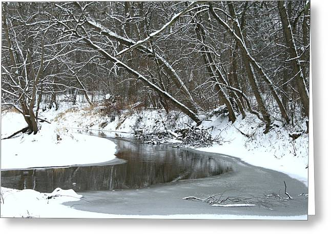 Winter In The Park Greeting Card by Kay Novy