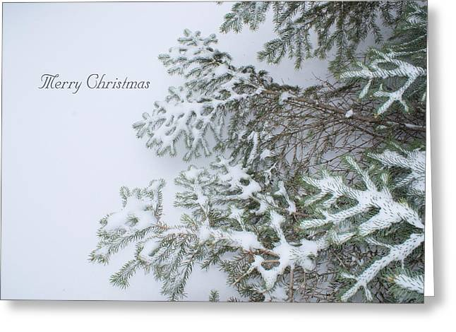 Christmas Greeting Greeting Cards - Winter Lace Greeting Card by Joanne Smoley