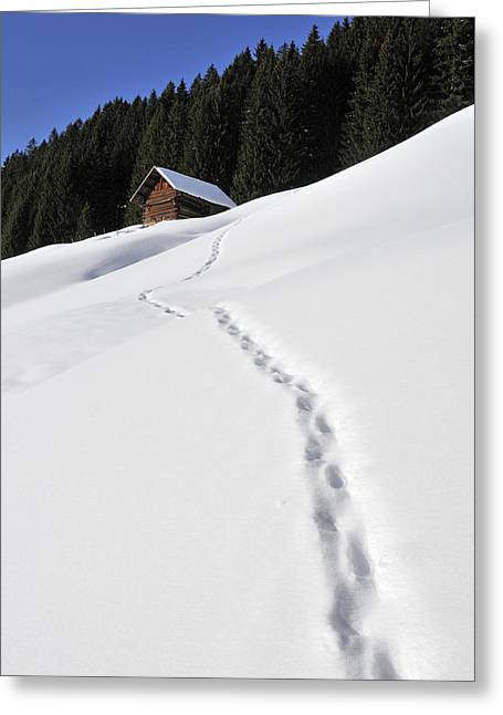 Wintry Photographs Greeting Cards - Winter landscape - footprints in the snow leading to a barn Greeting Card by Matthias Hauser