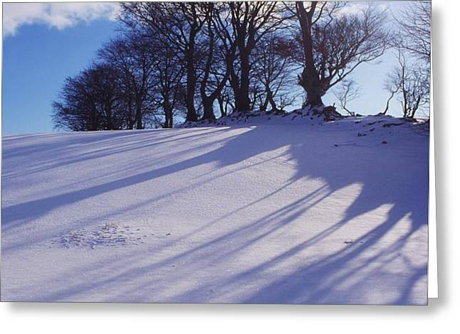 Winter Landscape Greeting Card by The Irish Image Collection