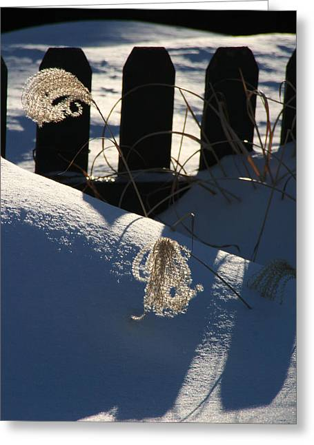 Michael Friedman Greeting Cards - Winter Life Greeting Card by Michael Friedman