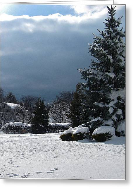 Mikki Cucuzzo Greeting Cards - Winter Greeting Card by Mikki Cucuzzo