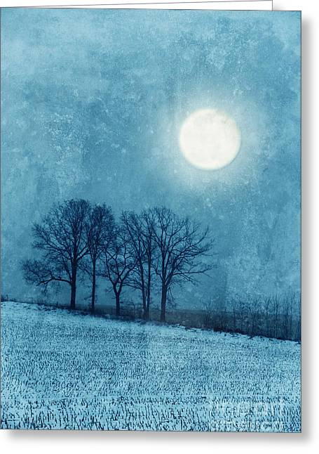 Snowy Evening Greeting Cards - Winter Moon over Farm Field Greeting Card by Jill Battaglia
