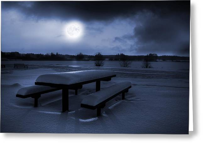 Snowy Night Night Greeting Cards - Winter Moonlight Greeting Card by Jaroslaw Grudzinski