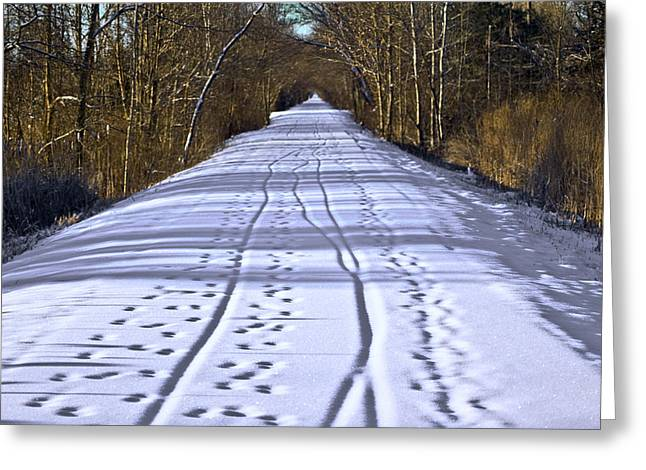 Winter Morning On Macomb Orchard Trail Greeting Card by LeeAnn McLaneGoetz McLaneGoetzStudioLLCcom