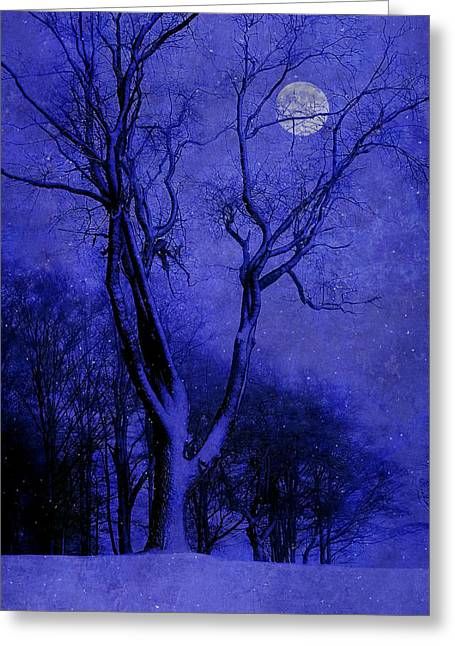 Winter Night Greeting Cards - Winter Nights Greeting Card by Ron Jones