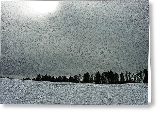 Winter Digital Photo Scene Greeting Cards - Winter on Marys Peak Greeting Card by Bonnie Bruno