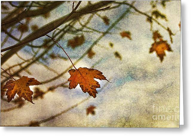 Leaves Greeting Cards - Winter On The Way Greeting Card by Rebecca Cozart