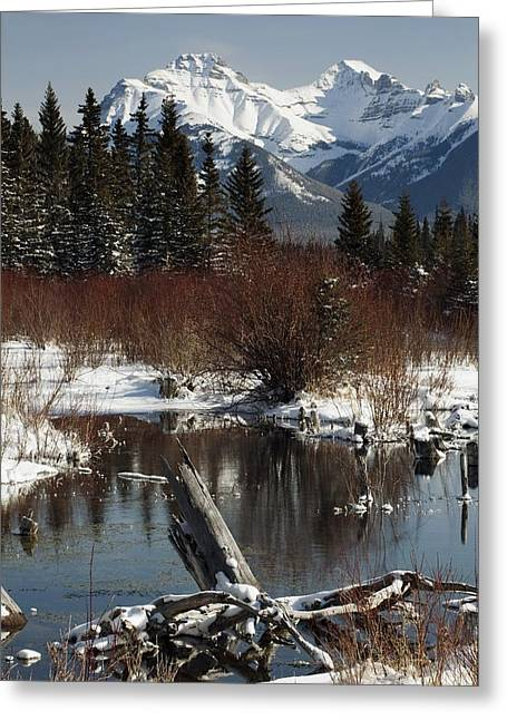 Winter Over Vermilion Lake, Banff Greeting Card by Michael Interisano