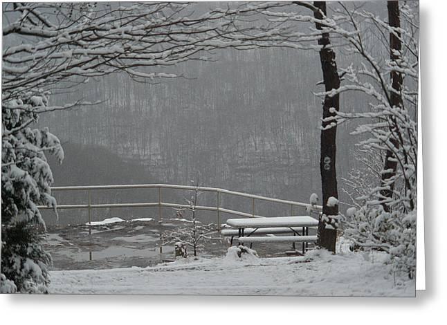 Winter Park Greeting Cards - Winter Park 2 Greeting Card by Douglas Barnett