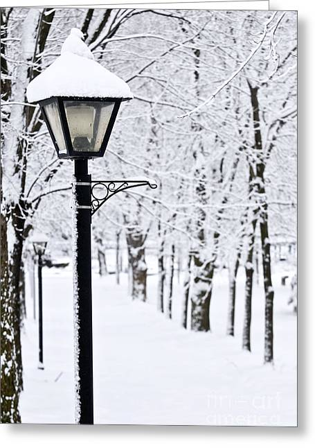 Snowy Tree Greeting Cards - Winter park Greeting Card by Elena Elisseeva