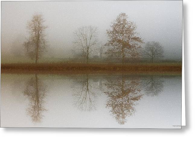 Refection Greeting Cards - Winter Prelude Greeting Card by Ron Jones