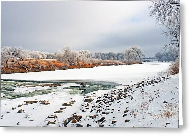 Winter Red River 2012 Greeting Card by Steve Augustin