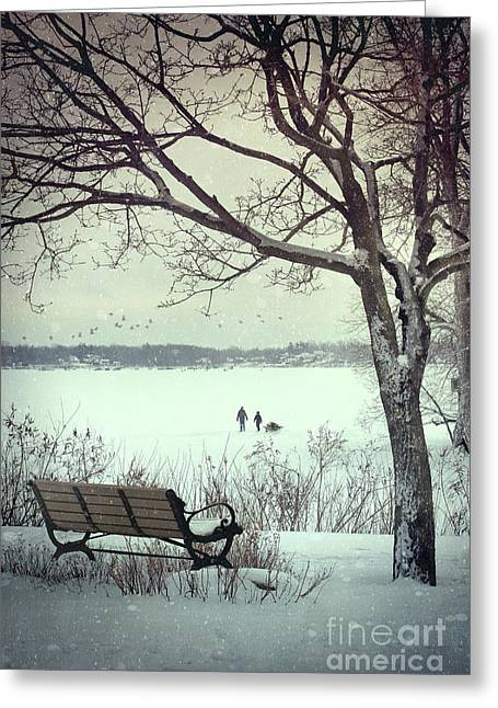 Desert Lake Greeting Cards - Winter scene with with bench and tree Greeting Card by Sandra Cunningham