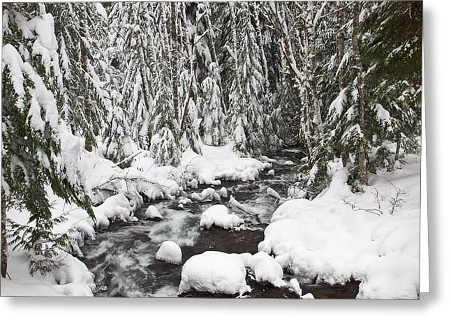 Winter Snow Along Still Creek In Mt Greeting Card by Craig Tuttle