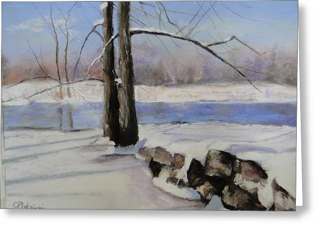 River View Pastels Greeting Cards - Winter Solace Greeting Card by Cindy Plutnicki