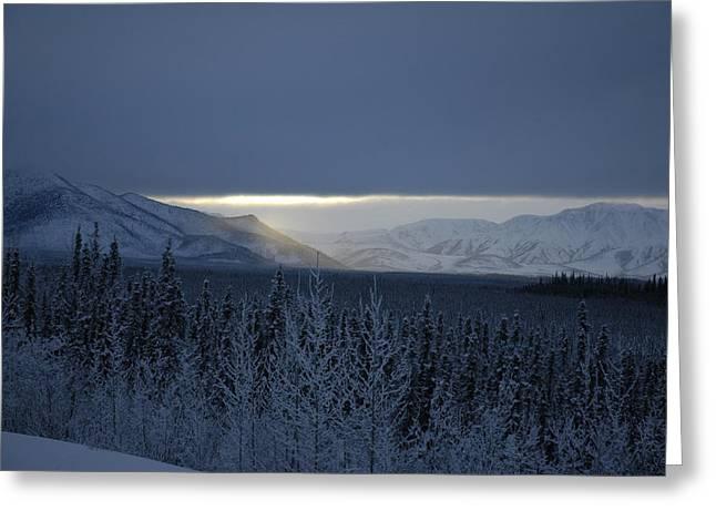 Winter Sun Alaska Greeting Card by John Wolf