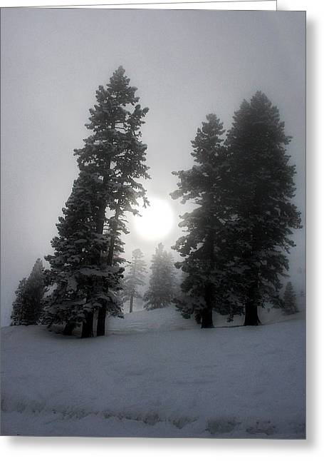 Sking Greeting Cards - Winter Sun Greeting Card by Alex Lemus