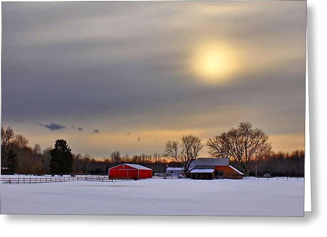 Winter Sun Greeting Card by Evelina Kremsdorf