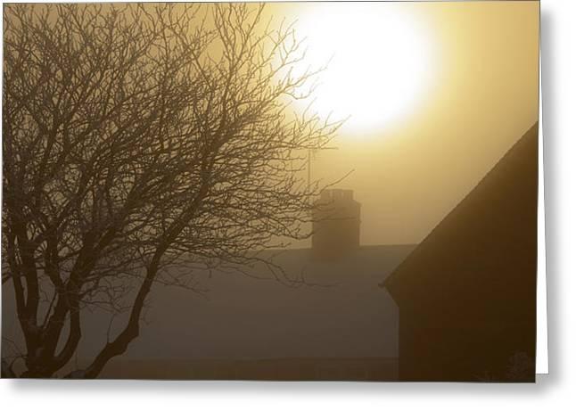Winter Sun Greeting Card by Svetlana Sewell