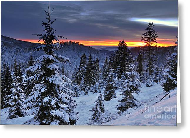 Winter Sunset Greeting Card by Ionut Hrenciuc