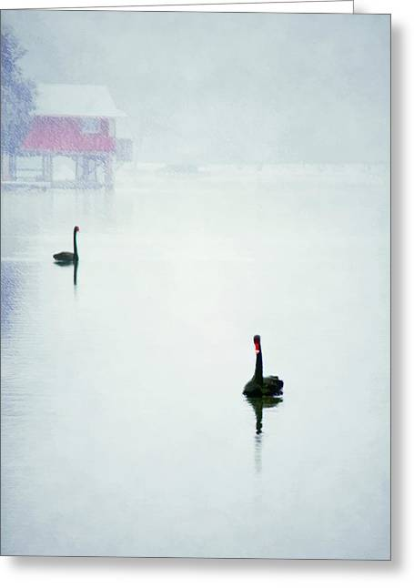 Lake House Greeting Cards - Winter Swans Greeting Card by Darren Fisher