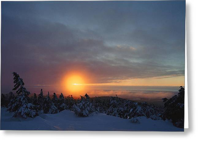 Sunset Scenes. Greeting Cards - Winter Twilight View, Harzhochharz Greeting Card by Norbert Rosing