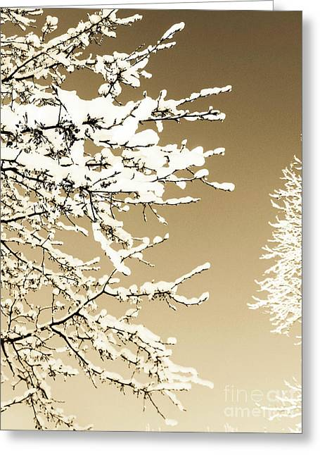 Crisp Mixed Media Greeting Cards - Winter View I Greeting Card by Mira Dimitrijevic